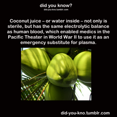 coconut juice water