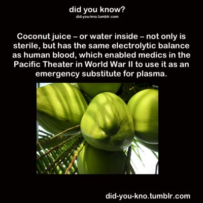 coconut juice water