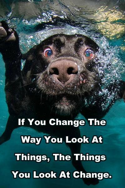 change the way
