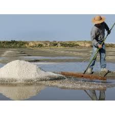 zoutvelden