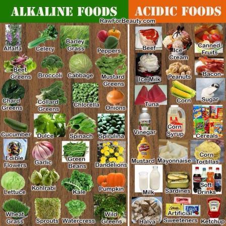 alkaline vs acid foods