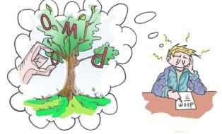 boom beeld