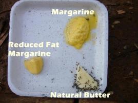 Boter_margarine
