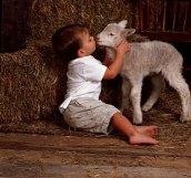 kid_lamb