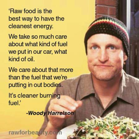 raw food is best way