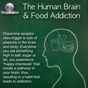 the human brain and food addiction