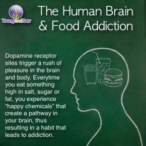 the human brain and food addiction